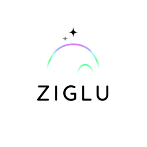 Critical Systems Reconciliation for Ziglu